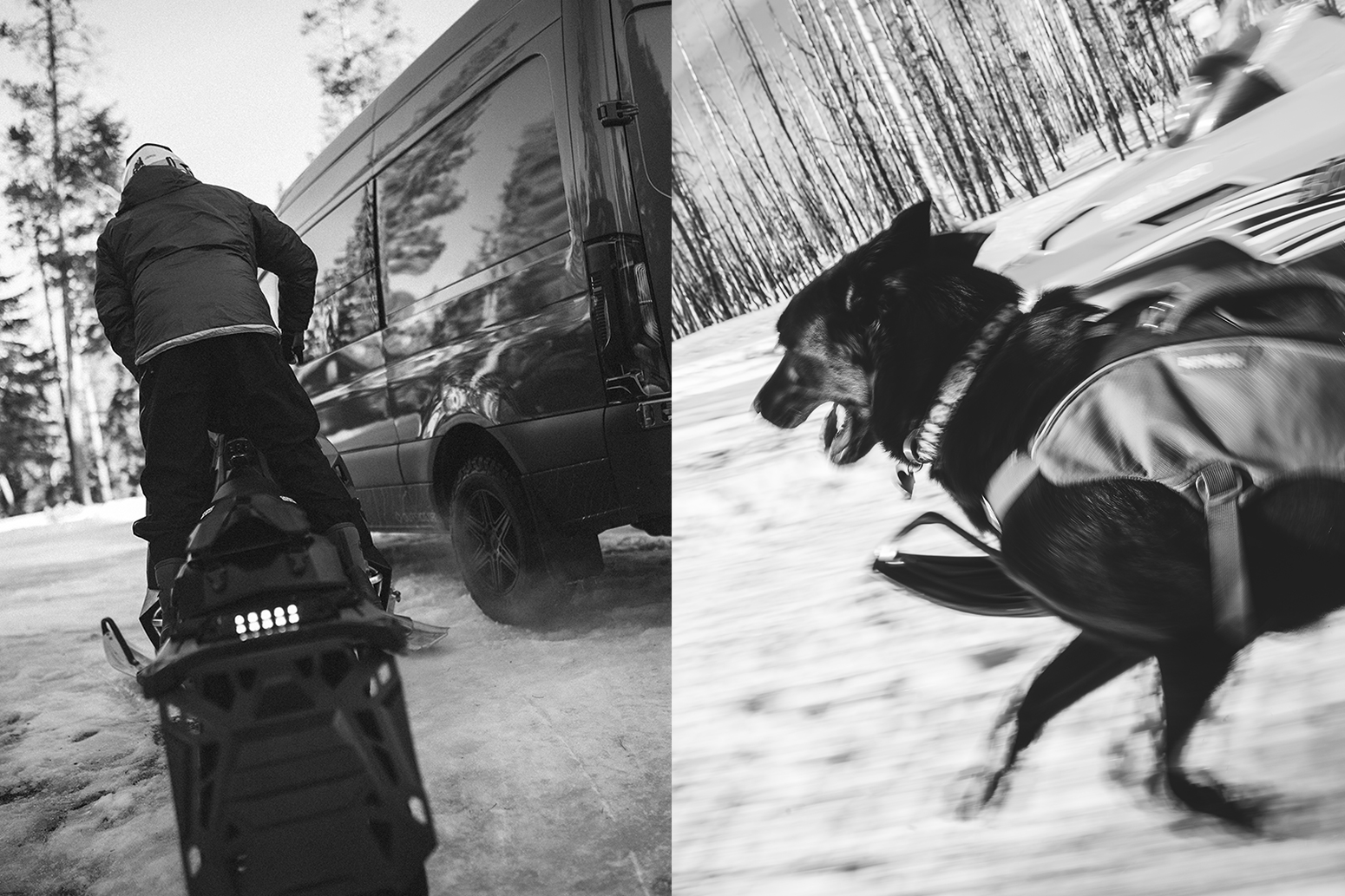 Person on a snowmobile and dog running